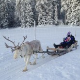 Lapland Holidays for single parents