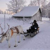 Reindeer rides in Lapland with Singlle With Kids