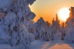 Winter Holidays for Children | Holidays to Lapland